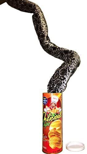 B&E LIFE The Potato Chip Snake Can Jump Spring Snake Toy Gift April Fool Day Halloween Party Decoration Jokes in A Can Gag Gift Prank Large Size (Potato Chip Style)