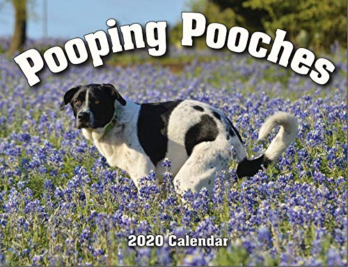 Read more about the article 2020 Pooping Pooches White Elephant Gag Gift Calendar