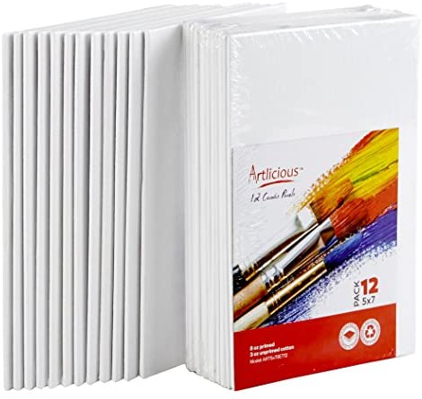Read more about the article Artlicious Canvas Panels 12 Pack – 5 inch x 7 inch Super Value Pack- Artist Canvas Boards for Painting