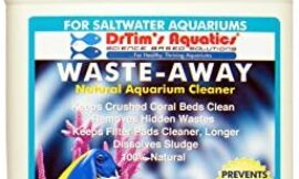 Dr. Tim's Aquatics Saltwater Waste-Away Sludge Busting Bacteria – for Saltwater Aquaria, Fish Tanks, Aquariums – Unclogs, Cleans Gravel Beds, Removes Hidden Wastes – 100% Natural – 128 Oz.