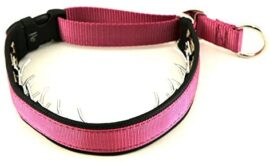 Keeper Collar 1″ Wide Hidden Prong with snap – Pink