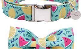 DOGWONG Cotton Dog Collar with Bowtie for Small Medium Large Dogs Flower Pet Collar Comfortable Dog Collar,Bowtie Dog Collar Adjustable XXS-XL