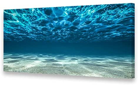 S00775 Print Artwork Blue Ocean Sea Wall Art Canvas Prints Picture Seaview Bottom View Beneath Surface Pictures Painting On Canvas Modern Seascape Home Office Decor XXLarge 30×60 inch