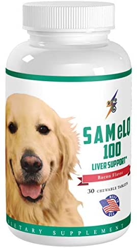 Best SAMeLQ 100 for Dogs & Cats (S-Adenosyl) Liver Support Supplement – Promotes Natural Hepatic Liver Health & Cognitive Brain Support – 30 Chewable Tablets (Bacon Flavor)