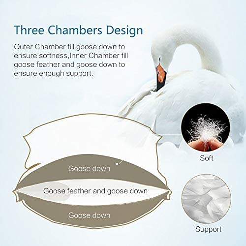 5-Star Hotel Double Down Sleeping Pillow| Pillow-in-a-Pillow Design, Firm Goose Feather Center Fill-Medium Neck Support| Fluffy, Comfort Down Outer-Luxurious Softness| Standard, Queen & King Sizes