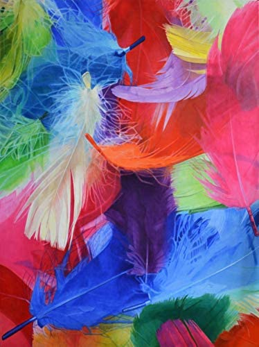 Abstraction de plumes (Feathers' abstraction)