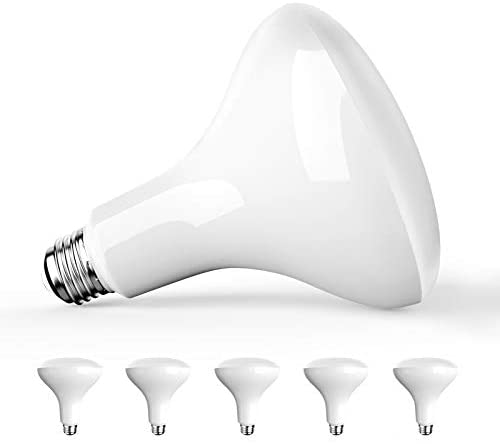 Amico 6 Pack BR40 LED Bulb 13W=85W, 5000K Daylight, 1050 LM, E26 Base, Dimmable, Indoor Flood Light for Cans – UL