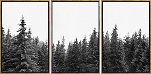 SIGNWIN 3 Piece Framed Canvas Wall Art Black and White Forest Photo Nature Wilderness Illustrations Abstract Traditional Relax/Calm Home Artwork Decoration for Living Room,Bedroom – 16″x24″x3 Panels