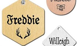 KEVSUN Stainless Steel Engraved Dog Name Tags, Two Sided Personalized ID Tag, Customizable Dog and cat Tags