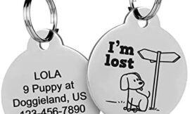 Funny Pet Tag ID, Custom Dog & Cat Name Tags, Round Engraved Pet ID Tags, Microchipped, Blind, Deaf and Lost Dog & Cat Stainless Steel Tags