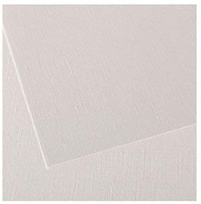 Canson Canva Paper Roll for Craftwork, Bleed-Proof Canvas Like Texture for Oil or Acrylic Paint, 136 Pound, 48 Inch x 5 Yard Roll