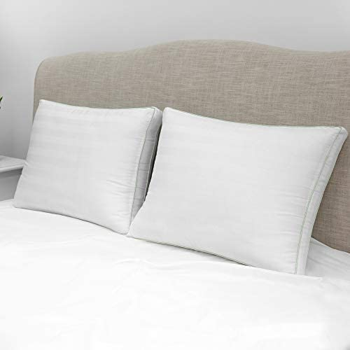 BioPEDIC 300 Thread Count Plush Filled Gusseted Bed Pillow with Ultra-Fresh Anti-Odor Treated Fiber, Standard, 2-Pack 2