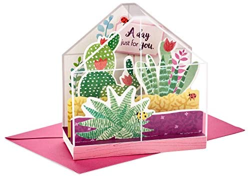 Hallmark Paper Wonder Displayable Pop Up Birthday Card or Mothers Day Card (Succulents)