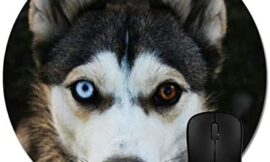 SG.Maybee Dog Husky Mouse Pad Trendy Office Desk Accessories 8″