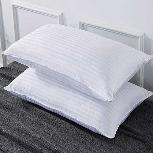ELNIDO QUEEN Bed Pillows for Sleeping 2 Pack – Luxury Down Alternative Pillows-Hypoallergenic and Skin-Friendly Queen Size(20x28inch)