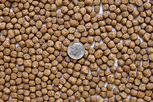 America's Best Koi Food 25 lbs Koi Fish Food Large 1/4 Inch Floating Pond Pellets for Koi and Pond Fish 32% Protein