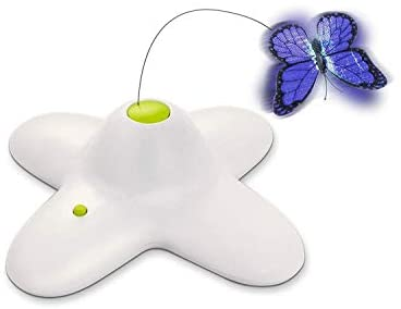 Read more about the article All for Paws Interactive Flutter Bug Cat Butterfly Toy with Two Replacements Flashing Butterfly Toys