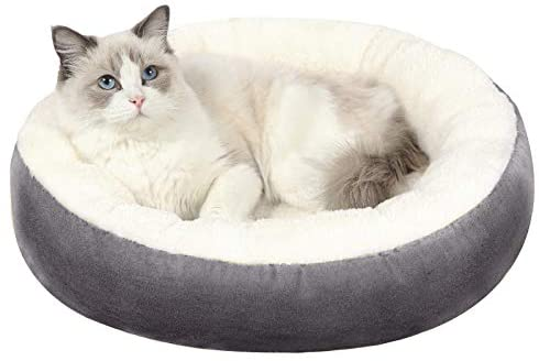 Read more about the article EDUJIN Warming Donut Cushion Cat Bed & Dog Bed, Calming Pup Dog Cat Bed for Small Medium Pet, Non-Slip Bottom, Machine Washable Round Warm Bed for Dogs with Fluffy Comfy Lining Plush Kennel(20″,24″)