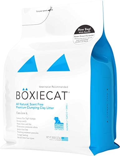 Read more about the article Boxiecat Premium Clumping Cat Litter – Scent Free – Clay Formula – Ultra Clean Litter Box, Longer Lasting Odor Control, Hard Clumping Litter, 99.9% Dust Free