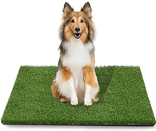 Read more about the article TAOAT 39.4 x 31.5 Inches Artificial Grass Rug for Dog Fake Grass Pee Pad for Pet Training Washable Grass Mat for Puppy Potty with Drainage Hole and Easy to Clean