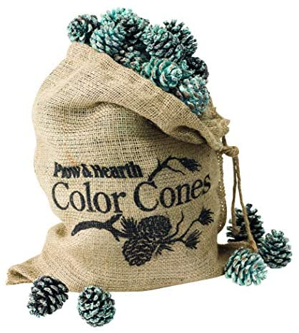 Read more about the article Fireplace and Firepit Color Cones, Festive Fun Rainbow Flame Changing Pine Cones, Firepit Campfire Hearth Wood Burning Accessories for Holidays or Anytime (6 LB in Burlap Bag)