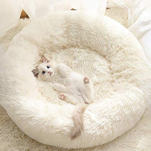 Read more about the article Gavenia Cat Beds for Indoor Cats,20''x20'' Washable Donut Cat and Dog Bed,Soft Plush Pet Cushion,Waterproof Bottom Fluffy Dog and Cat Calming and Self-Warming Bed for and Sleep Improvement,Beige