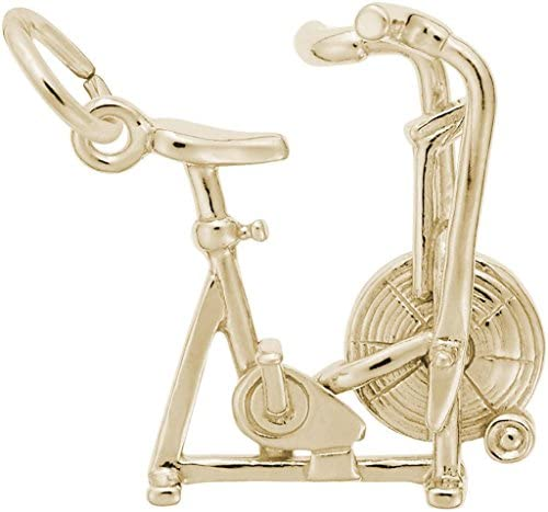 Read more about the article Rembrandt Exercise Bike Charm