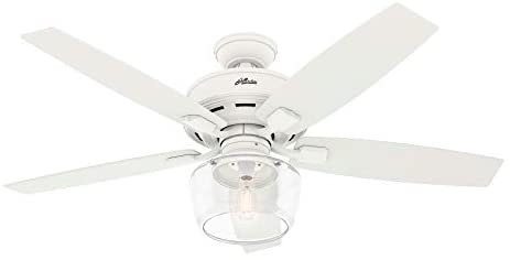Read more about the article Hunter Bennett Indoor Ceiling Fan with LED Light and Remote Control