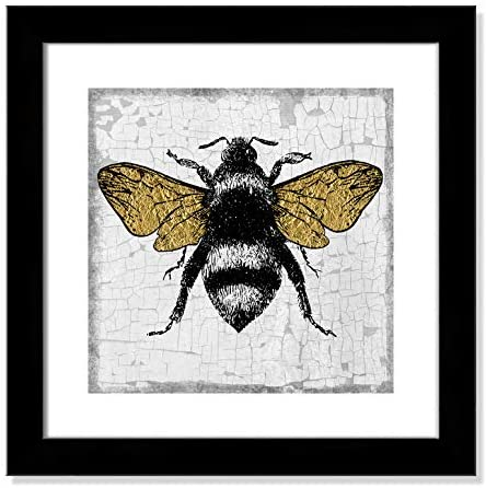 Read more about the article Casa Fine Arts Gold Wing Bee Modern Botanical Insect Wall Art Archival Print, 16″ x 16″, Matte Black Frame